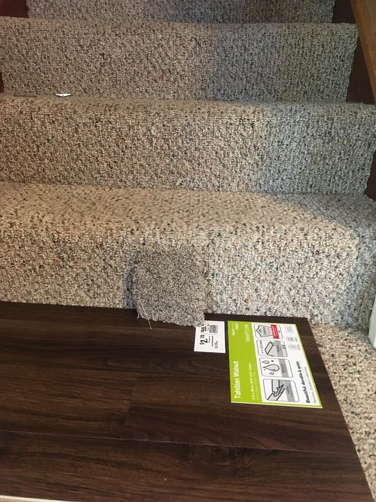 Photo of laminate floor and carpet samples